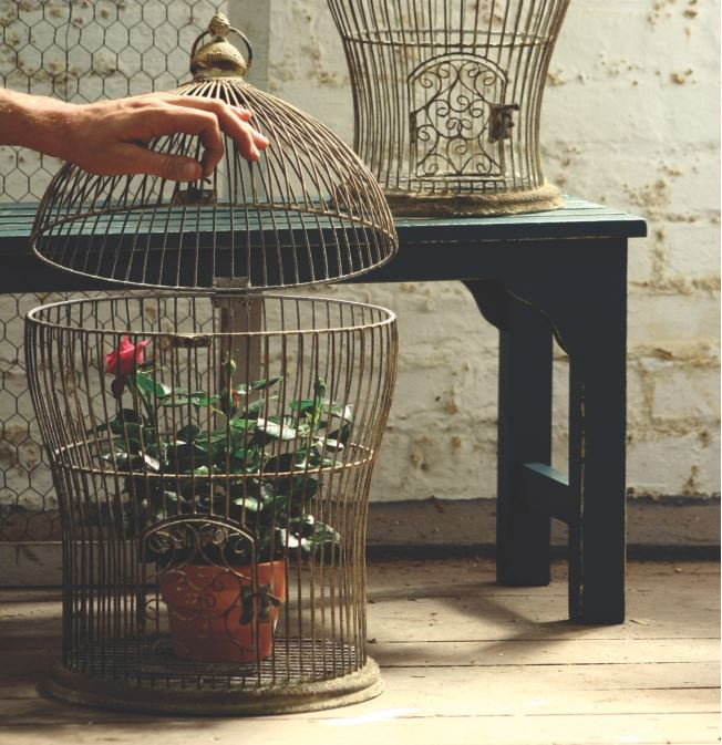 Home Accents Bird Cage
