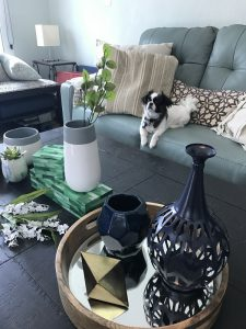 Coffee table decorations with vases, trays, boxes and other accent pieces.