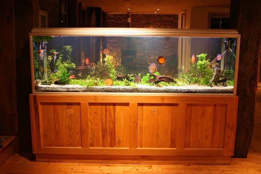 fish tank at night in beautiful house