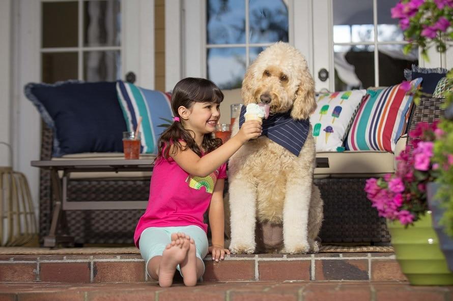 little girl feeding a dog an ice cream cone
