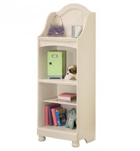 youth girls bookcase with little girl toys