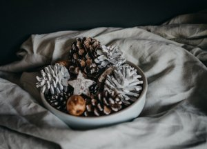 Bowls of pine cones with spray paint on top to look like snow.