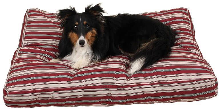 medium sized striped flat dog bed with a medium sized dog on top.