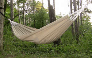 A cream colored hammock that is tied up on a tree.