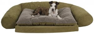 Medium sized green dog bed with a puppy laying in it.,