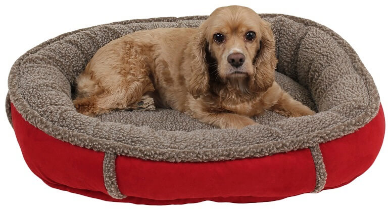 Small round dog bed in red with a medium sized dog laying inside.
