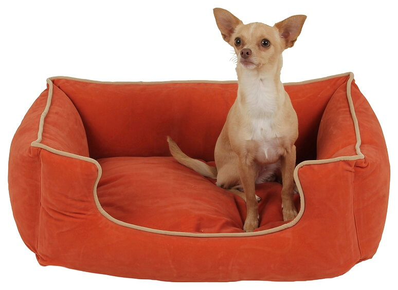 Small dog bed in red with a small dog sitting in it.