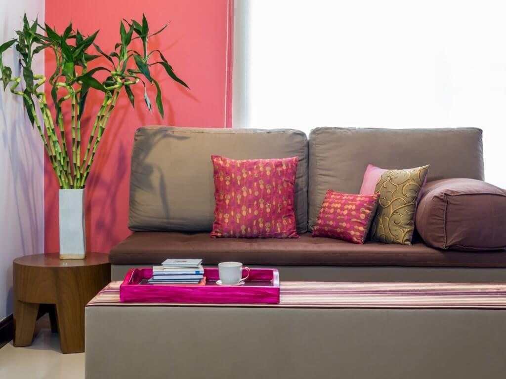 Modern living room decorated with sofa and vase of Lucky bamboo