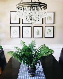 table with plant and chandelier overhead